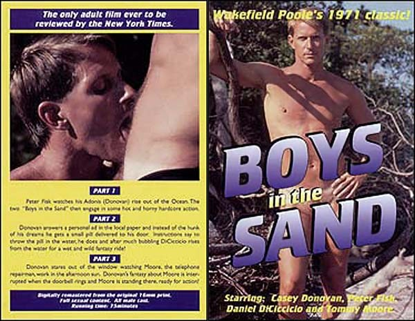 Boys in the Sand Gay Porn Video